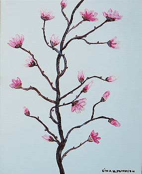 Gina Nicolae Johnson - Magnolia blossoms