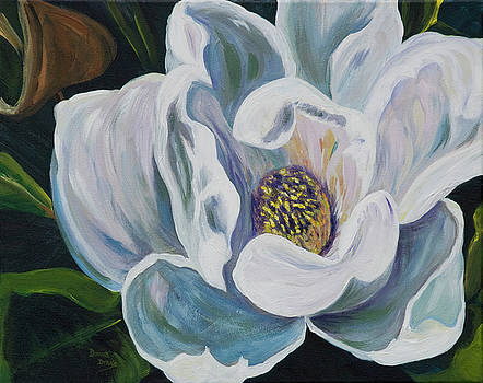 Magnolia by Donna Drake