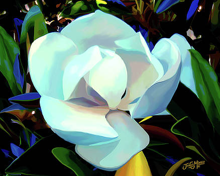 Magnolia Flower 1 by James  Mingo