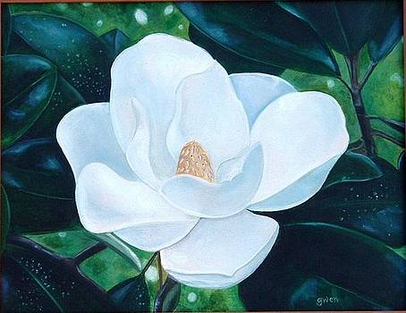Magnolia by Gwendolyn Frazier