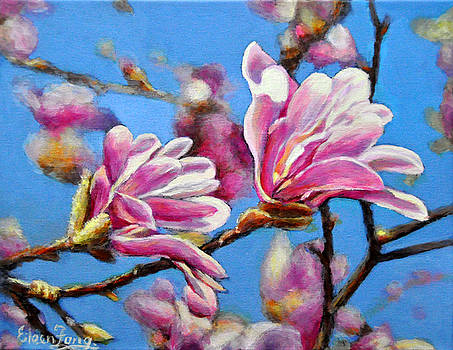 Magnolia in Spring by Eileen  Fong