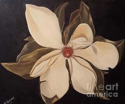 Magnolia by Isabel Honkonen