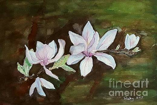 Magnolia - painting  by Veronica Rickard