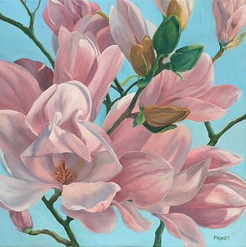 Magnolia by Rita-Anne Piquet