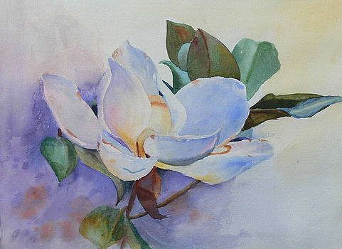 Magnolia by Sandy Reese