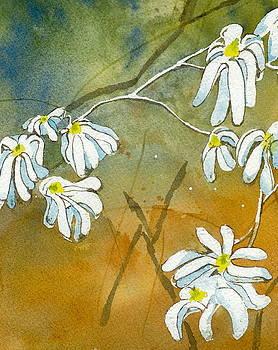 Magnolias 2 of 3 by Lynn Babineau
