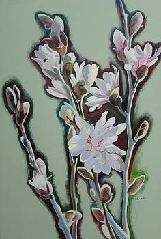 Magnolias I by Sheila Diemert