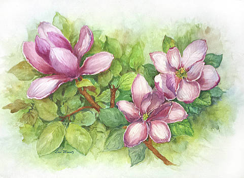 Magnolias in Spring  by Lois Mountz
