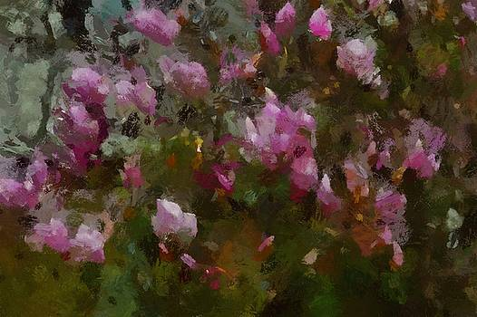 Magnolias In The Abstract by Tricia Marchlik
