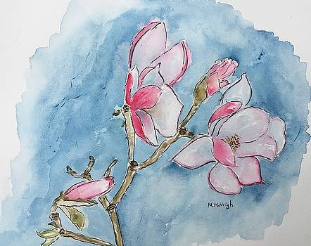Magnolias by Marita McVeigh