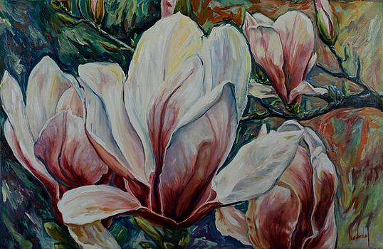 Magnolias by Rick Nederlof