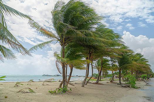 Mahahual Beach by John M Bailey