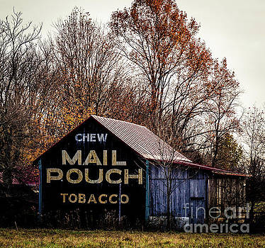 Mail Pouch Barn by Mary Carol Story
