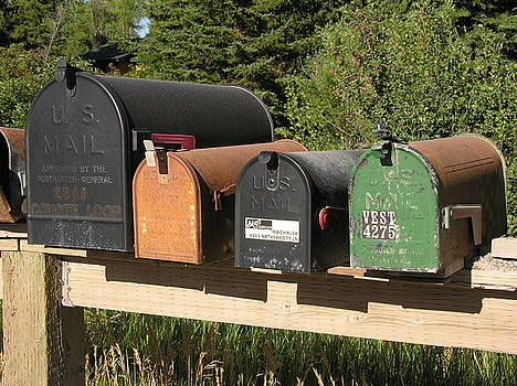 Mail seakers by Diane Greco-Lesser