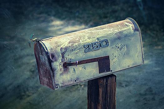 Mailbox 250 El Camino Drive by YoPedro