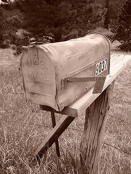 Mailbox by Steve  Weihe
