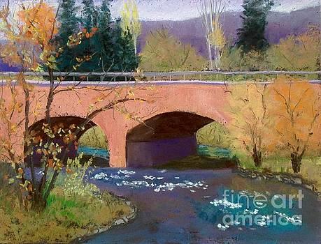 Main ave Bridge, Durango, CO by Rosemary Juskevich