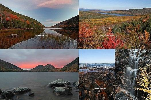 Juergen Roth - Maine Acadia National Park Landscape Photography