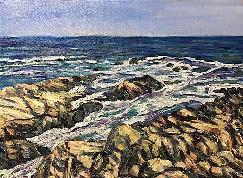 Maine Coast-Along the Marginal Way by Richard Nowak