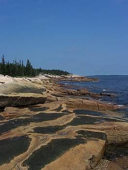 Maine Coast by Lisa Kane