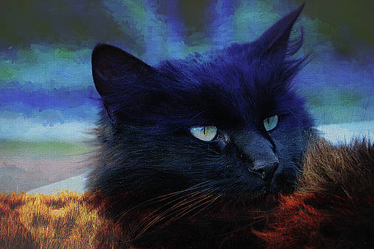 Maine Coon Portrait 130 - Painting by Ericamaxine Price