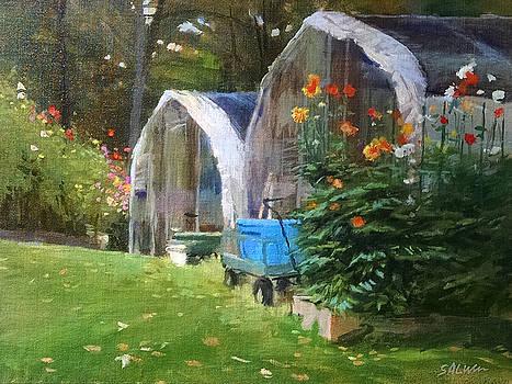 Maine Dahlias by Peter Salwen