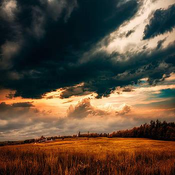 Maine Farm by Bob Orsillo