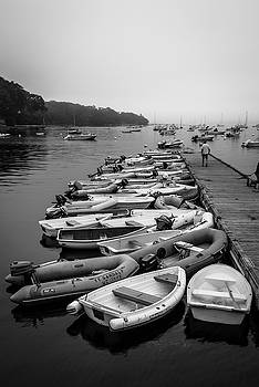 Ranjay Mitra - Maine Harbor on Misty Morning in BW