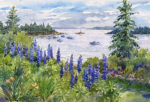 Maine Lupines by Leslie Fehling