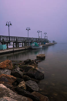 Ranjay Mitra - Maine Misty Sunset at Falmouth Harbor