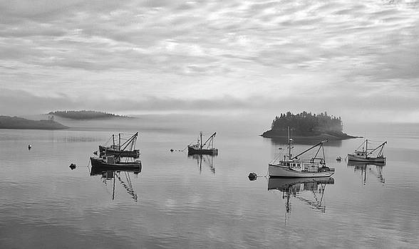 Maine Mooring Black and White by Thomas Pettengill