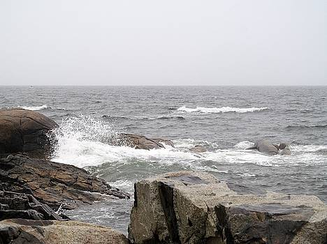 Maine Rocks by Loretta Pokorny