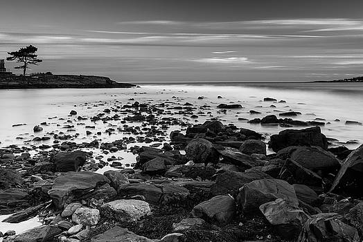 Ranjay Mitra - Maine Rocky Coast in BW