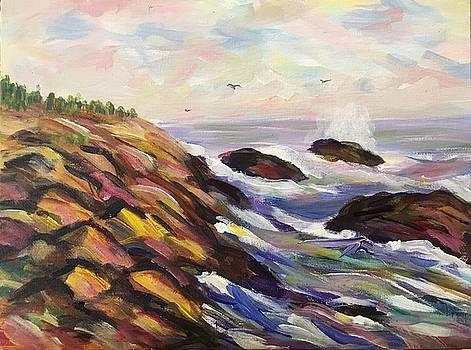 Maine Rocky Coast by Richard Nowak
