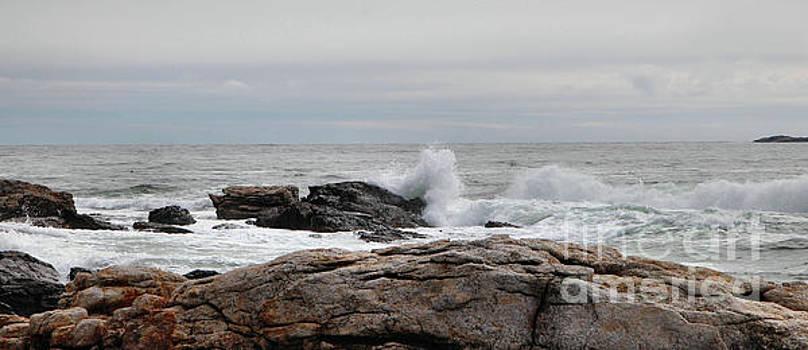 Sandra Huston - Maine Rocky Shore Panorama