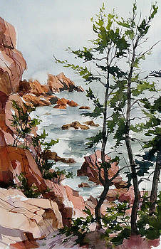 Maine Shoreline by Art Scholz