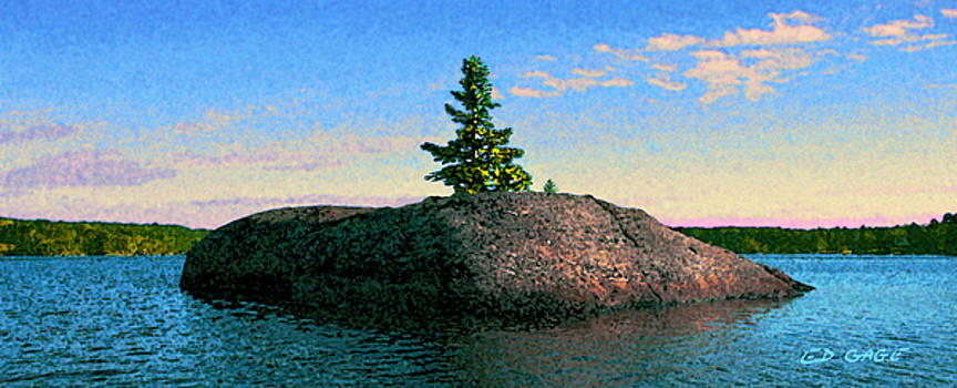 Maine Stone Island Sunrise by Ed A Gage