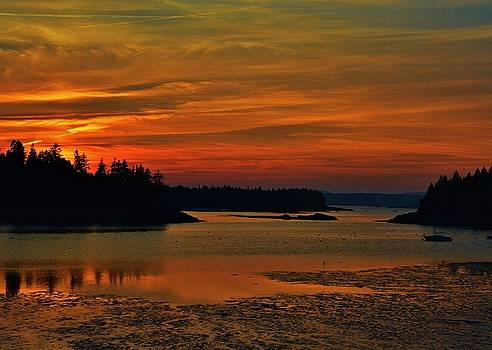 Maine Sunset by Lisa Kane