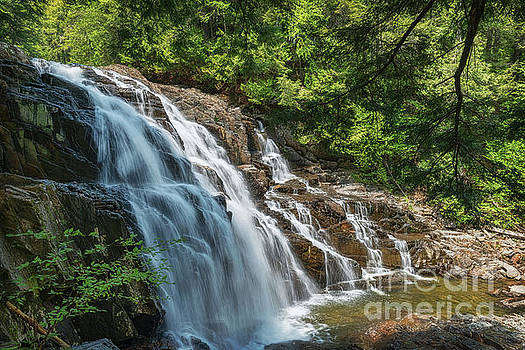 Maine Waterfall by Sharon Seaward