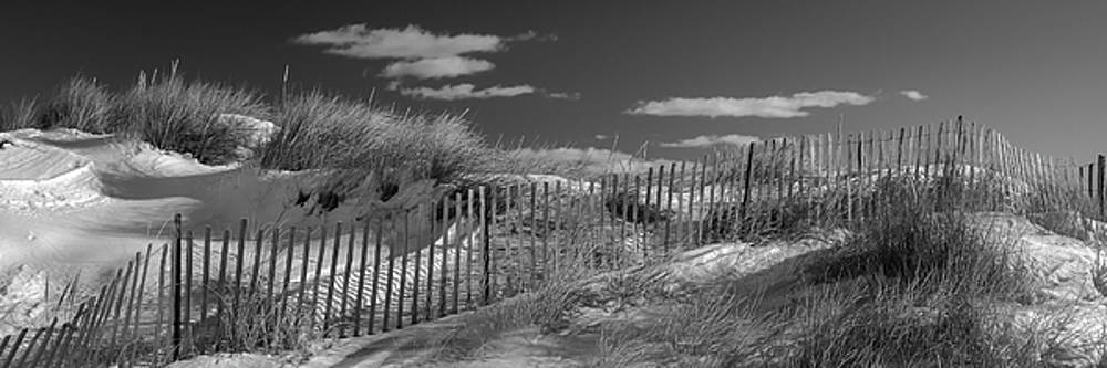 Ranjay Mitra - Maine Winter Coastal Dunes BW Panorama