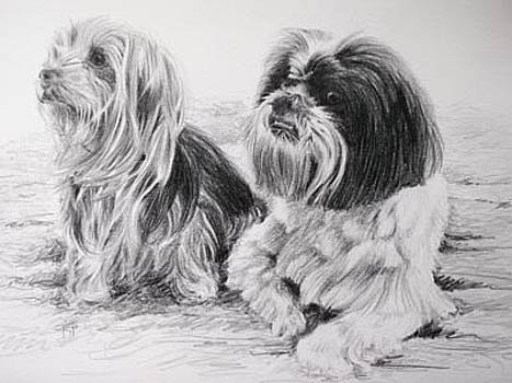 Maisey and Ollie by Keran Sunaski Gilmore