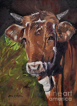Maisy the Cow- Brown Cow - Moo by Jan Dappen