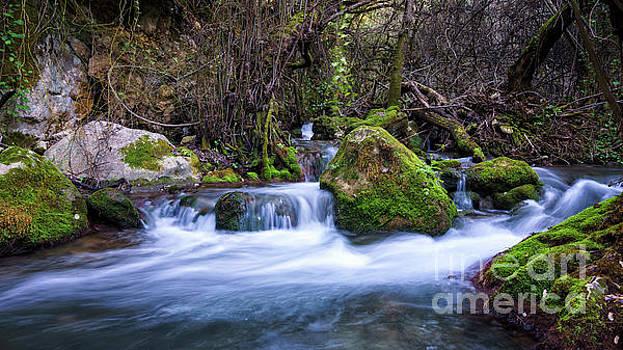 Majaceite River Benamahoma Cadiz Spain by Pablo Avanzini