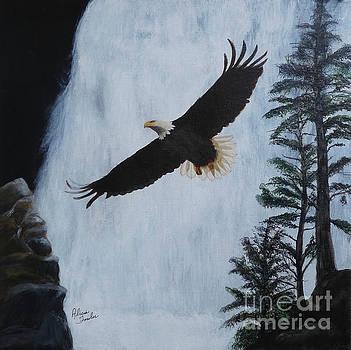 Majestic Bald eagle by Alicia Fowler