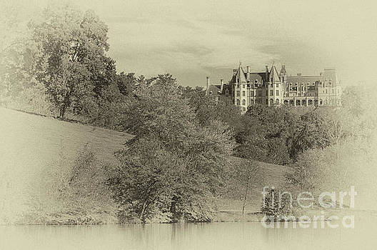 Majestic Biltmore Estate by Dale Powell