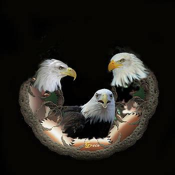Majestic Eagles by Julie Grace
