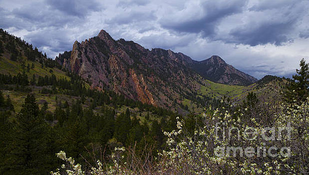 Majestic Flatirons by Barbara Schultheis