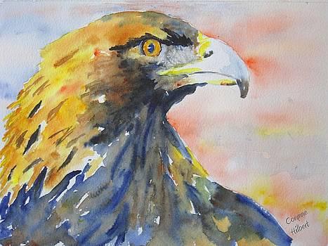 Majestic Golden Eagle by Corynne Hilbert