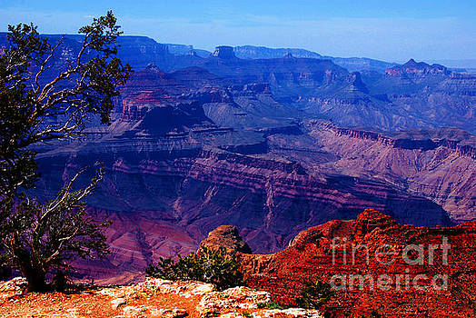 Susanne Van Hulst - Majestic Grand Canyon
