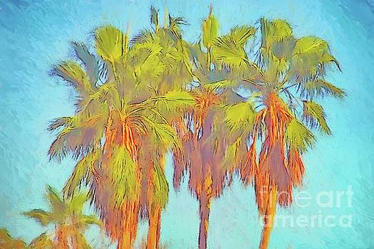 Majestic Palms by Gerhardt Isringhaus